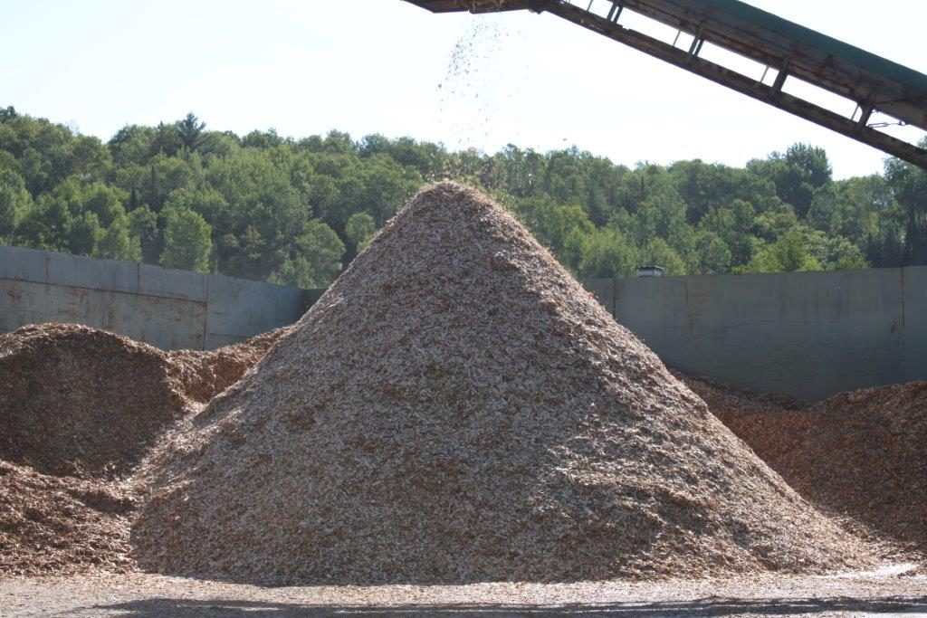 Wood chips for pulp and paper