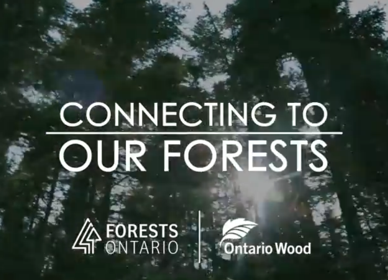 Connecting to our Forests video
