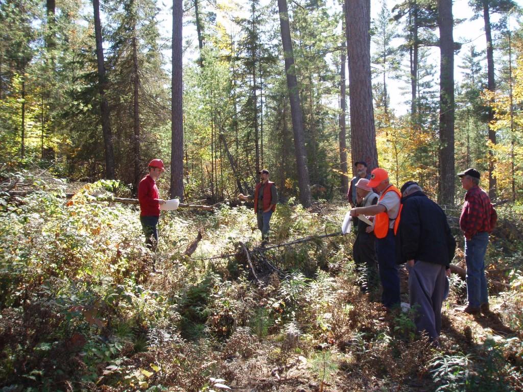 LCC tour white pine management
