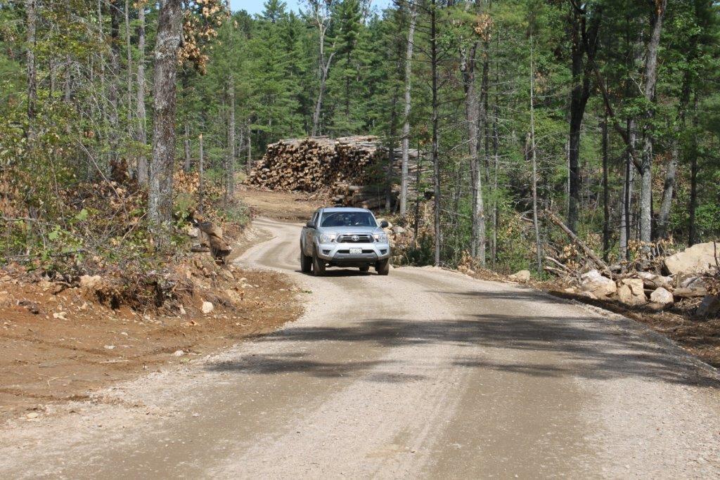 Bush roads