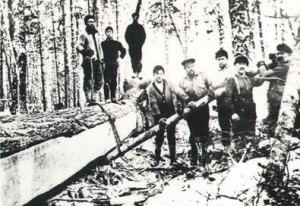 Historical picture showing the squaring of white pine timber in Algonquin Park